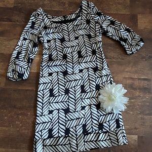 White house Black market women dress size XXS